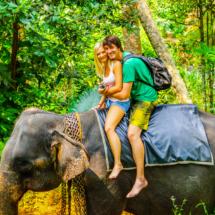 srilanka-485