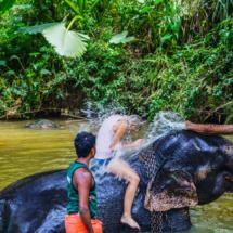 srilanka-537
